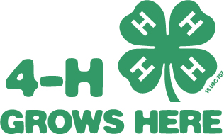 National 4-H logo