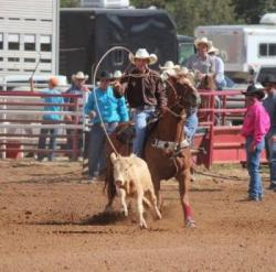 Nmsu Aces 4 H Youth Development 4 H Rodeo