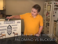 (Screen shot of Denny giving a presentation with poster about a horse)