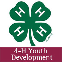 Green Clover_4-H Youth Development_Icon