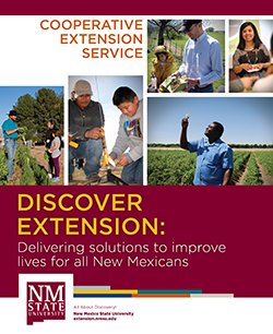Discover Extension booklet cover