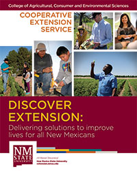 Discover Extension