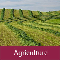 Agriculture programs at Santa Fe county