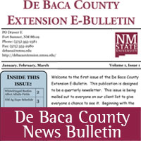 DeBaca County Newsletter