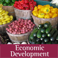 Economic Development programs at Socorro  county