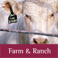 Farm & Ranch programs at Union county