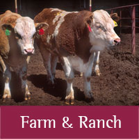 Farm and Ranch  programs at New Mexico State University, Cooperative Extension Service