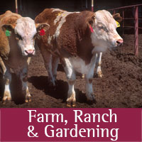 Farm, Ranch & Gardening programs at Quay county
