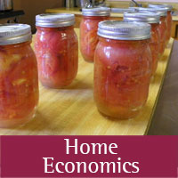 Home Economics programs at Socorro  county