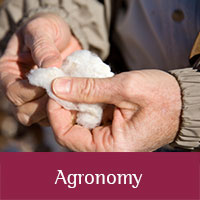 Agronomy publications