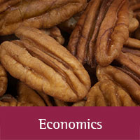 Economics http://aces.nmsu.edu/pubs/_z/publications