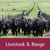 Livestock Range publications