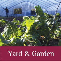 Yard and Garden programs at Sandoval county