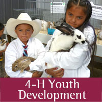 4-H programs at Sandoval county